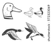 Set Of Wild Ducks Icons...