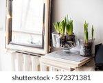 white scandinavian spring... | Shutterstock . vector #572371381