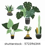 hand drawn tropical house... | Shutterstock .eps vector #572396344
