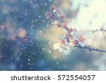 abstract blurred background of... | Shutterstock . vector #572554057