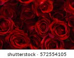 Stock photo red color roses background 572554105