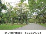 daan park in taipei taiwan | Shutterstock . vector #572614735