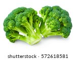 fresh broccoli isolated on... | Shutterstock . vector #572618581