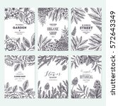 floral card design templates.... | Shutterstock .eps vector #572643349