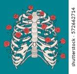 illustration of human rib cage... | Shutterstock .eps vector #572662714