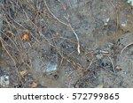 ground | Shutterstock . vector #572799865
