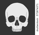 vector image of skull | Shutterstock .eps vector #572876371