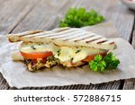 toasted panini with grilled...   Shutterstock . vector #572886715