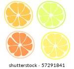 four types of citrus fruits ... | Shutterstock .eps vector #57291841