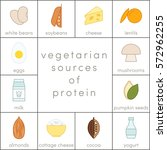 vegetarian sources of protein ... | Shutterstock .eps vector #572962255