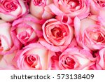 Stock photo a beautiful bouquet of pink roses and sweet for valentine s day 573138409