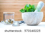 fresh herbal leaves basil  sage ...   Shutterstock . vector #573160225