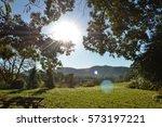 sunny morning light  | Shutterstock . vector #573197221