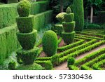 Decorative Green Park  ...