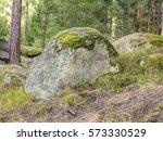 Big Boulder In The Coniferous...