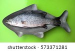 snapper in a container is a...   Shutterstock . vector #573371281