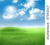 green grass  blue sky with...   Shutterstock . vector #57341017