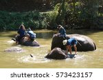 lampang thailand february 2 ... | Shutterstock . vector #573423157
