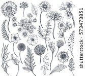 Stock vector collection of hand drawn flowers and plants monochrome vector illustrations in sketch style 573473851