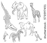 Hand Drawn African Animals And...
