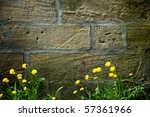 Old Grunge Wall With Blooming...