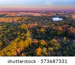 fall colors at dusk  looking... | Shutterstock . vector #573687331
