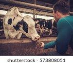 Young Farmer Feeding Cow In Th...