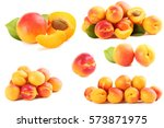 ripe apricots fruit isolated on ... | Shutterstock . vector #573871975