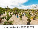 colorful spring summer park...   Shutterstock . vector #573912874