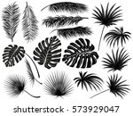 Silhouettes Of Tropical  Leave...