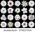 Stock photo mega pack of natural and surreal white flowers in isolated on black 574017514