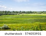 the nature of the banks of the...   Shutterstock . vector #574053931