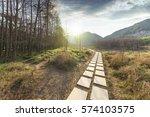 sunset in the woods corridor | Shutterstock . vector #574103575