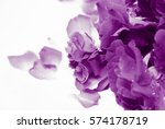 natural light and shadow in... | Shutterstock . vector #574178719