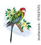 vector illustration of the... | Shutterstock .eps vector #574237651