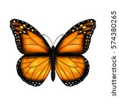 butterfly | Shutterstock . vector #574380265
