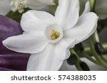 closeup on white fragile...   Shutterstock . vector #574388035