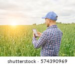 farmer in a plaid shirt... | Shutterstock . vector #574390969
