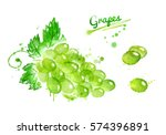 watercolor bunch of grapes with ... | Shutterstock . vector #574396891