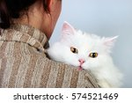 yellow eyed white cat on a... | Shutterstock . vector #574521469