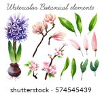 big set of watercolor botanical ... | Shutterstock . vector #574545439
