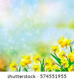 Bright And Colorful Flowers Of...