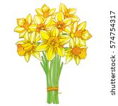 Vector bouquet with outline yellow narcissus or daffodil flowers isolated on white. Ornate floral element for spring design, greeting card, invitation. Bunch of narcissus flower in contour style - stock vector