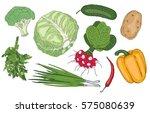 vegan food ingredients ... | Shutterstock .eps vector #575080639