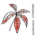 red plant leaves. hand drawing... | Shutterstock . vector #575090485