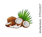 coconut with half and green... | Shutterstock .eps vector #575114317