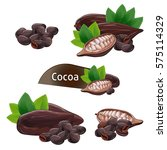 cocoa pod and bean with green... | Shutterstock .eps vector #575114329
