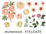 watercolor flowers. flower... | Shutterstock . vector #575121655