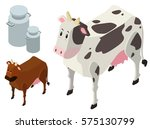 3d design for cows and milk... | Shutterstock .eps vector #575130799
