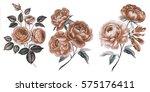 vintage flowers. vintage roses...   Shutterstock . vector #575176411